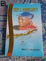 whyabodoland